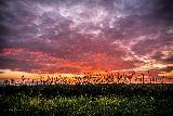 Bellissimo paesaggio rurale al tramonto