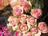 Immagine ama Bouquet di rose per chi si ama