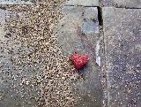 Immagine terra Cuoricino rosso su marciapiede in mezzo alla terra