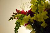 Immagine pensiero Fiori gialli e rossi insieme per pensiero carino