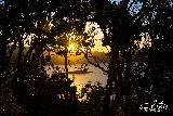 Immagine sole Il lago attraverso gli alberi al calar del sole
