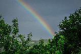 Immagine nasce Porzione di arcobaleno che nasce dal verde degli alberi