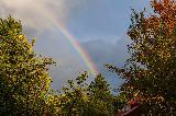 Immagine partire Porzione di arcobaleno che sale in cielo a partire da alberi