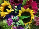 Immagine speciale Tanti e vari fiori per un pensiero speciale