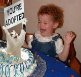 Immagine sei Torta con gatto che sorregge un cartello con scritto sei stata adottata