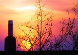Immagine vino Una bottiglia di vino al tramonto per un incontro romantico